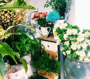 一家鲜花店