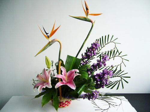 自由式插花艺术