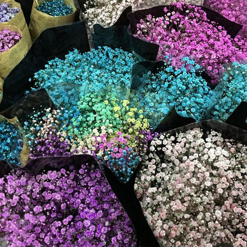 鲜花原材料
