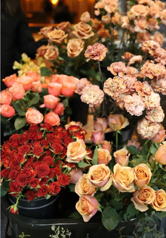 花卉行业很快就会恢复到往期的正常状态.jpg