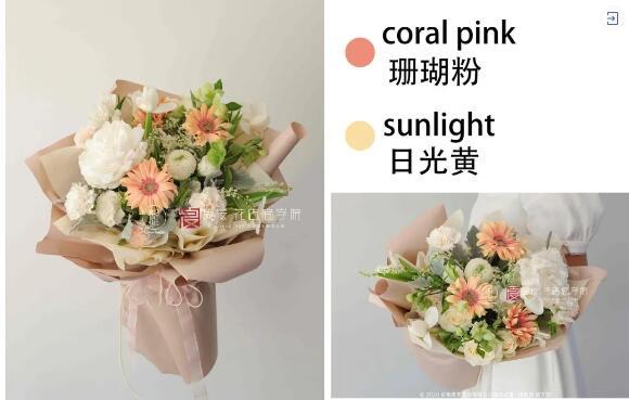 珊瑚粉&日光黄.jpg