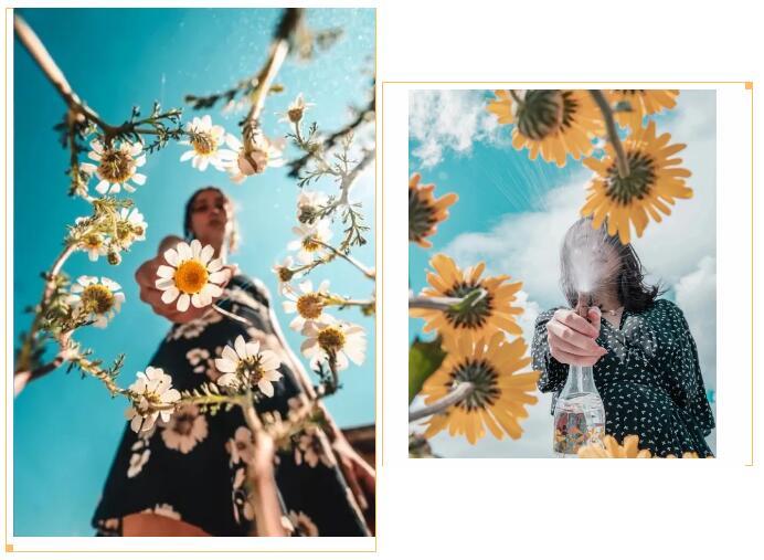 镜头绑花法.jpg