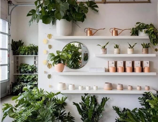 空间感、美感兼具的绿植陈列.jpg