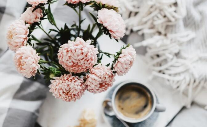 让鲜花从精神需求变成了生活必须品.jpg